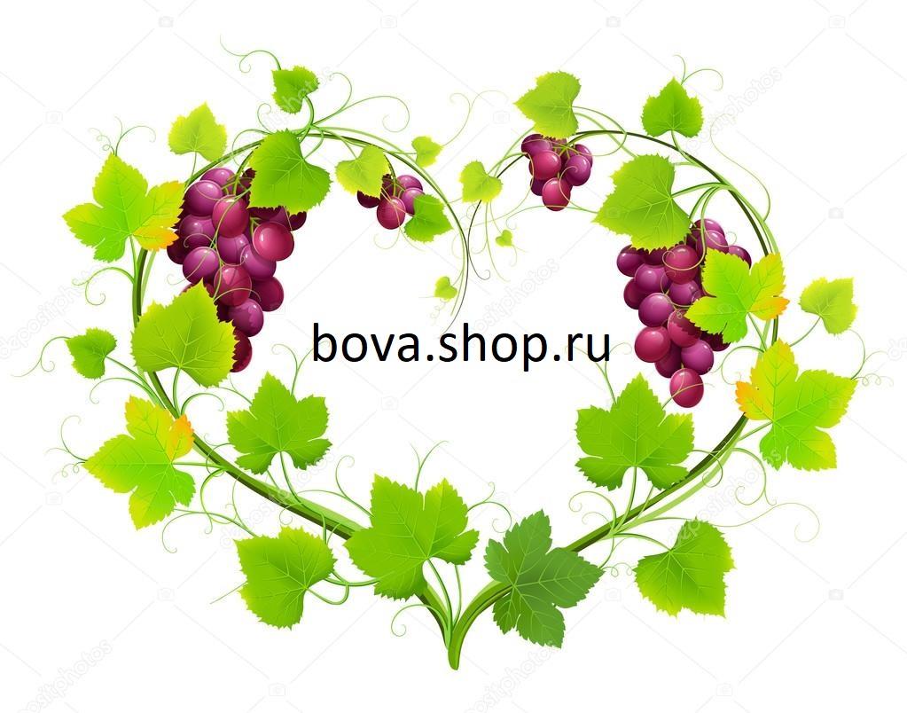 bovashop